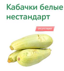 Zucchini nicht auf Lager