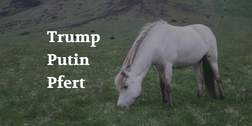 Trump Putin Pferd