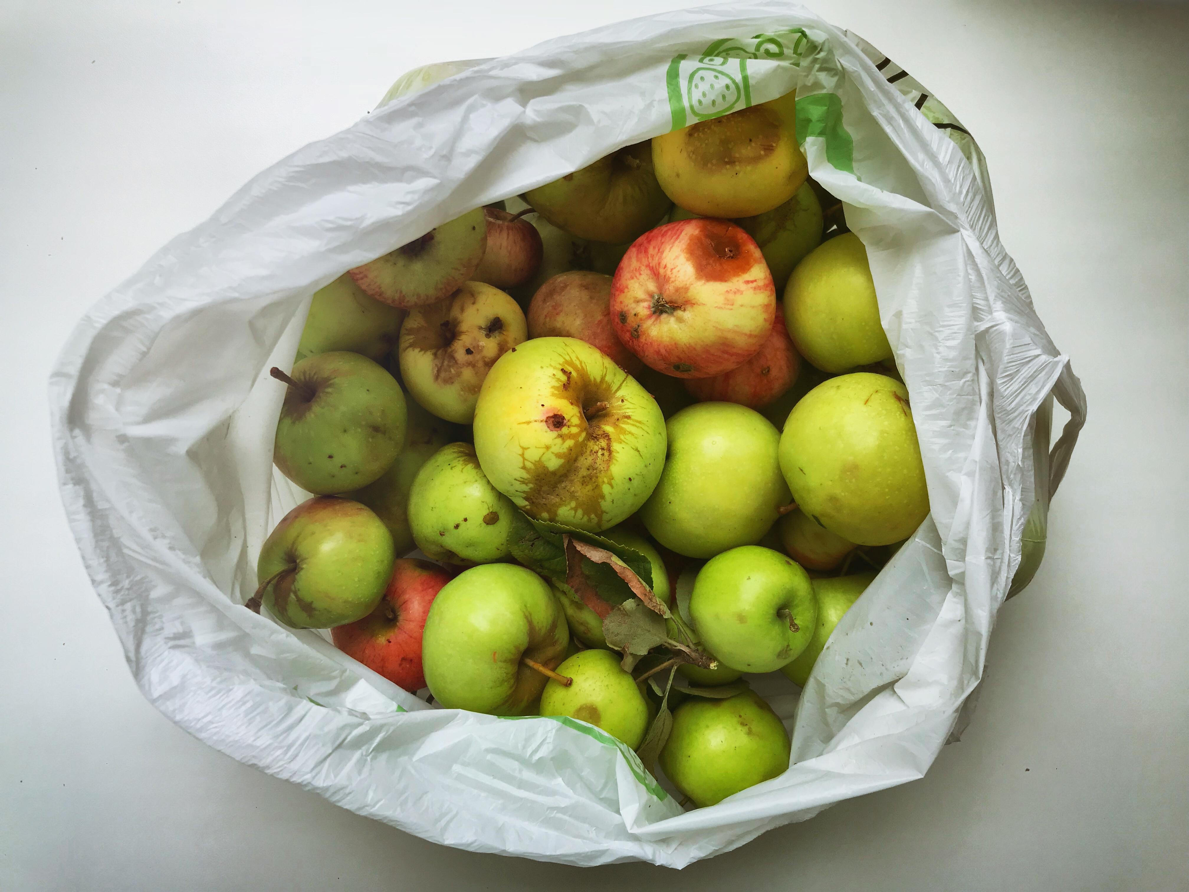 kolomenskoje aepfel plastiktuete kscheib