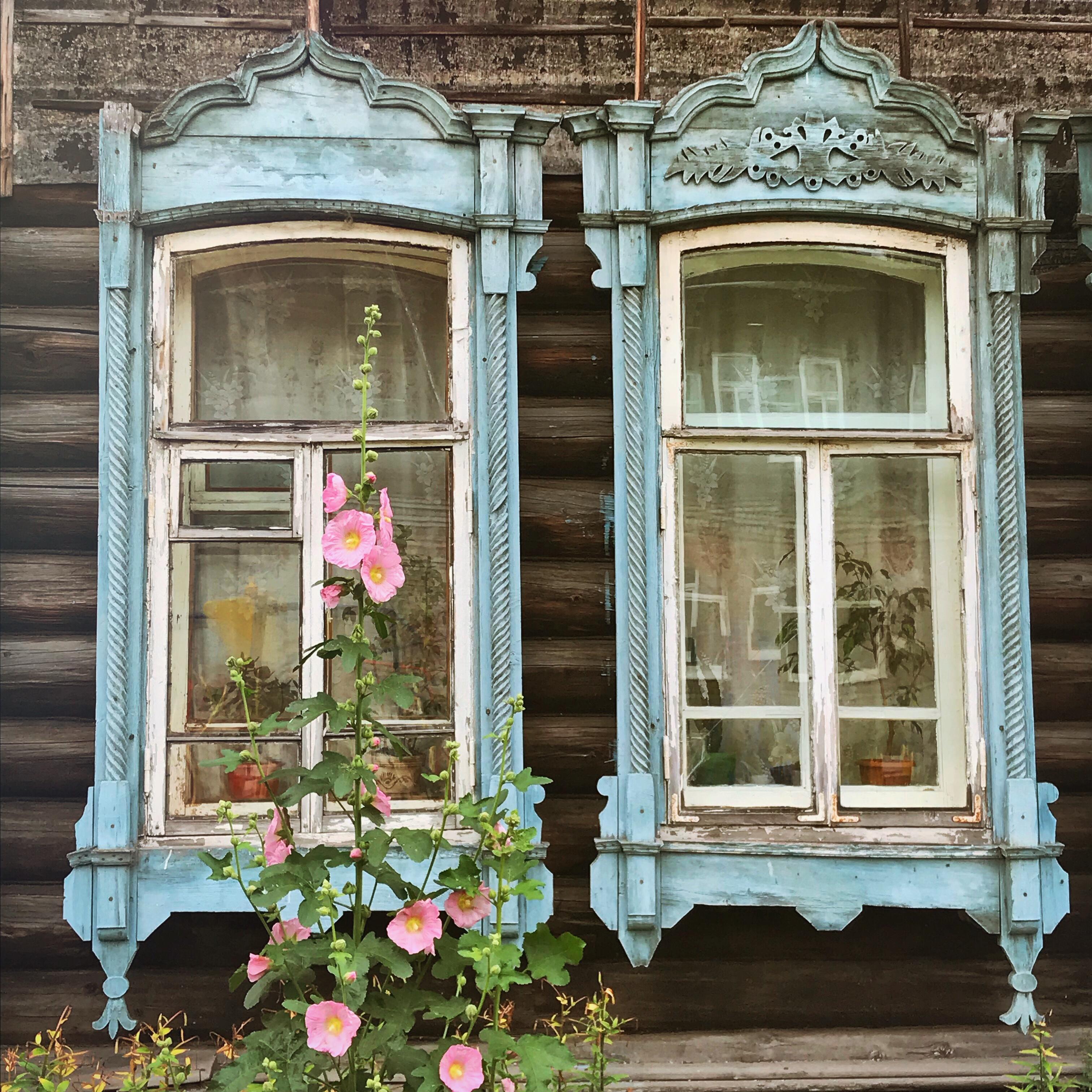 Sibirien Holzhaus Fenster Stockrose